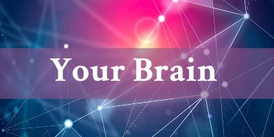 New Brain Science